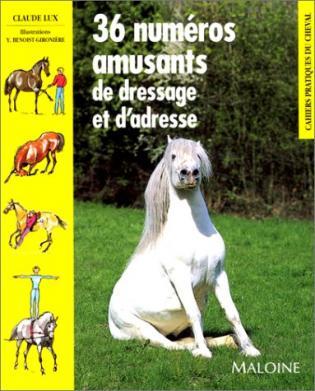 Le mystère du cheval écuyer - Claude Lux
